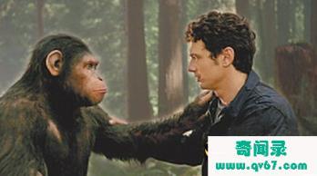你敢信么?人类是外星人和猿人后代