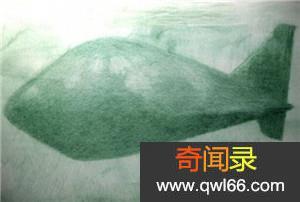海底不明潜水物uso 银色蜂巢消失在海平线